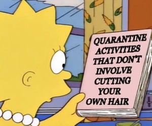 meme, funny, and quarantine image