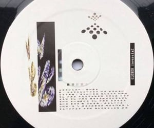 archive, vinyl, and cd image