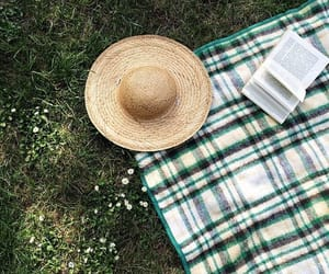 book, nature, and aesthetic image