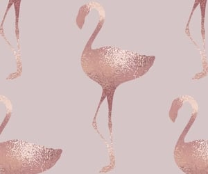 aesthetic, flamingos, and rose gold image