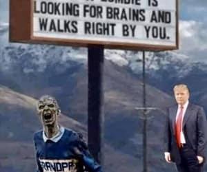 no brains around here and hungray zombie image