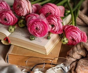 aesthetic, books, and peonies image