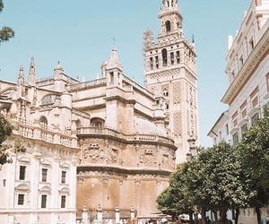 morning, places, and sevilla image