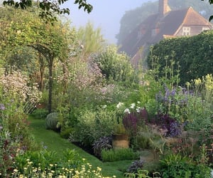 garden, nature, and aesthetic image