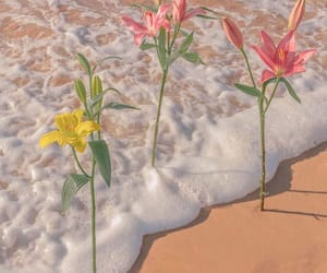 flowers, aesthetic, and ocean image