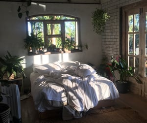 bedroom, plants, and aesthetic image