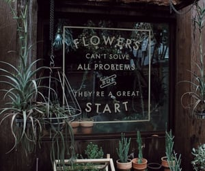 flowers, plants, and green image