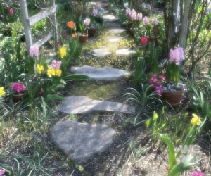 flowers, cottage, and garden image