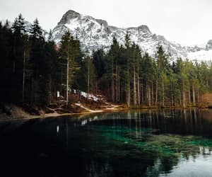 austria, forest, and lake image