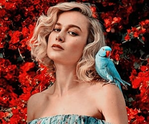 aesthetic, tumblr, and brie larson image
