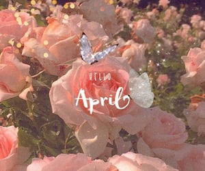april, butterfly, and chic image