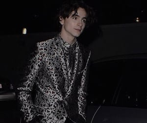 theme, roleplay, and timothee chalamet theme image