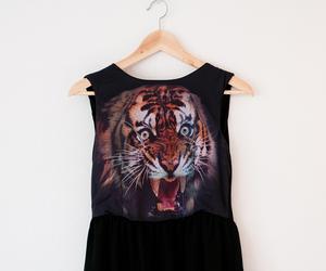 tiger and fashion image