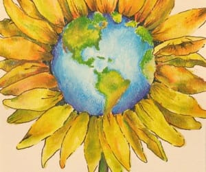 flowers, sunflower, and world image