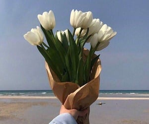 flowers, aesthetic, and love image