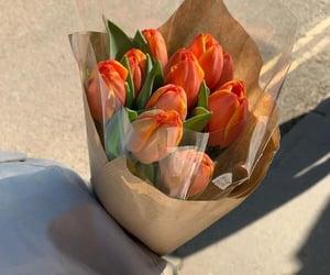 alternative, flowers, and orange image
