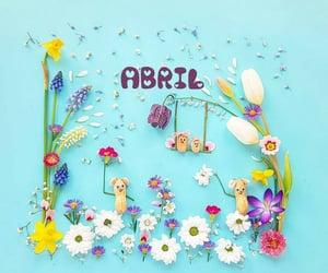 feliz, flores, and happy image