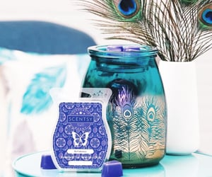 peacock, scentsy, and wax image