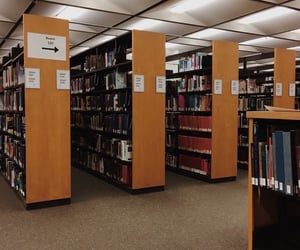 aesthetic, bookshop, and library image