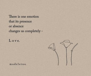 emotion, words, and love image