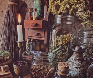 botanic, herb, and magic image