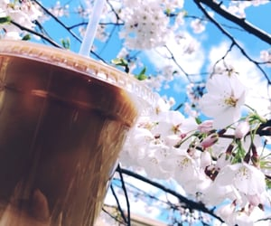 coffee, drinks, and spring image
