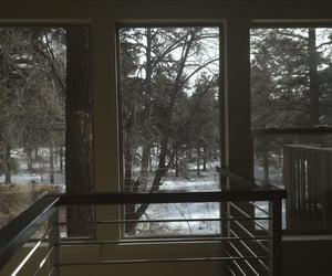arizona, day, and trees image