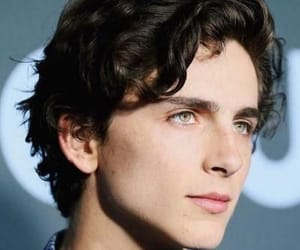 timothee chalamet, actor, and beautiful boy image