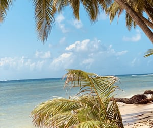 destination, beach vibes, and Maldives image