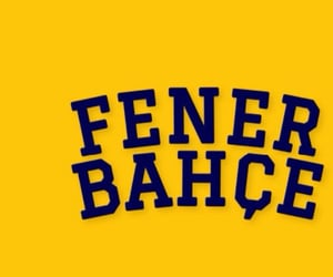 fb, twitter, and fenerbahce image