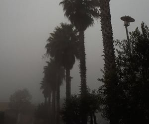 fog, winter, and cloudy weather image