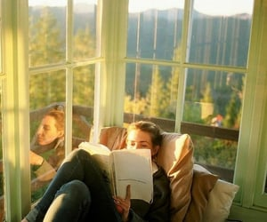book, reading, and windows image