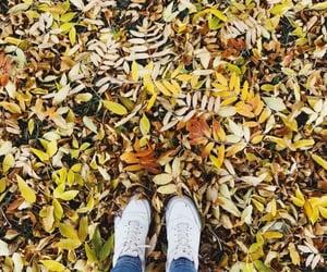autumn, girls, and yellow image