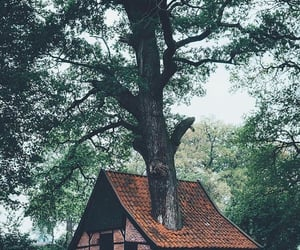 architecture, cottages, and countryside image