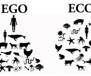 ego, eco, and animal image