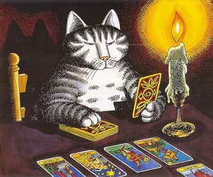 cat, manifestation, and tarot image