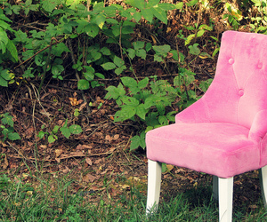 chair, luxe, and nature image