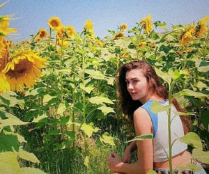 sunflower, love, and burcu ozberk image