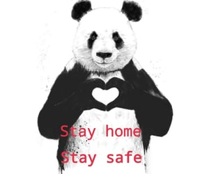 followers, stay home, and heart image