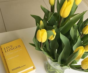 flowers, yellow, and book image