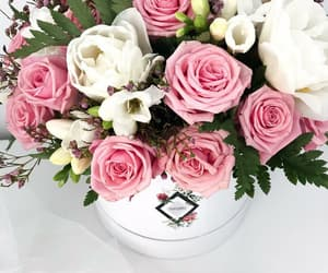 beautiful, flowers paris, and roses flowers image