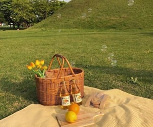 picnic, nature, and aesthetic image