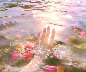 aesthetic, water, and flowers image
