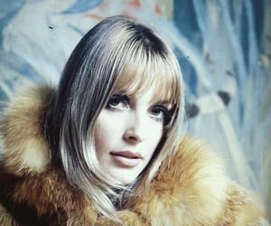 1960s, 60s, and blonde image