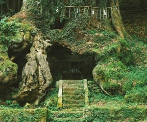 fairy, green, and japan image