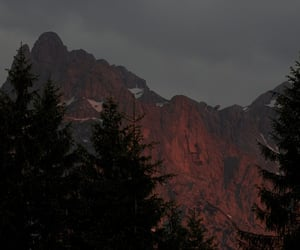 beauty, mountains, and pines image