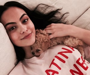 puppies, veronica lodge, and beronica image