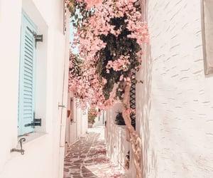 Greece, flowers, and mykonos image