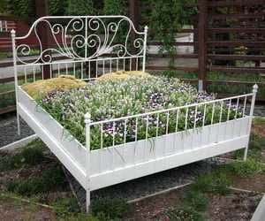 bed, fantasy, and floral image