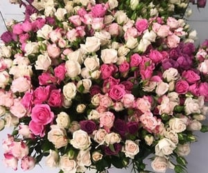 fashion, flowers, and pink flowers image